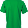 (PS) (02.0002) – James & Nicholson JN 02 [fern green] (Rücken) (1)