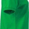 (PS) (02.0071) – James & Nicholson JN 71 [fern green] (Rechts) (1)