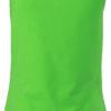 (PS) (02.0970) – James & Nicholson JN 970 [lime green] (Rücken) (1)