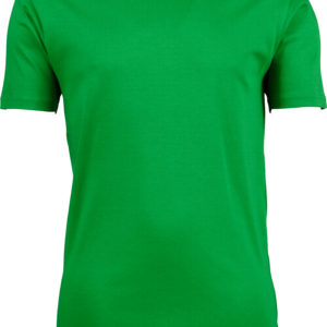 (PS) (18.0520) - Tee Jays 520 [spring green] (Front) (1)