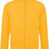(PS) (20.K911) – Kariban K911 [yellow] (Front) (1)