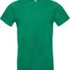 (PS) (01.003T) – B&C #E190 [kelly green] (1)
