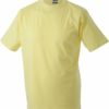 (PS) (02.0001) – James & Nicholson JN 01 [light yellow] (Front) (1)