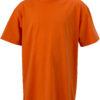 (PS) (02.0019) – James & Nicholson JN 19 [dark orange] (Front) (1)