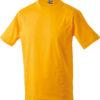 (PS) (02.0019) – James & Nicholson JN 19 [gold yellow] (Front) (1)