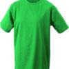 (PS) (02.0019) – James & Nicholson JN 19 [irish green] (Front) (1)