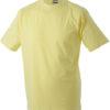 (PS) (02.0019) – James & Nicholson JN 19 [light yellow] (Front) (1)